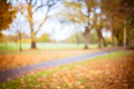 Abstract blur city park autumn season bokeh background Banque d'images