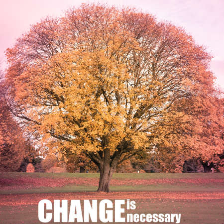 Change is necessary phrase on a background with Autumn scenery in a park with colourful leaves and sunshine