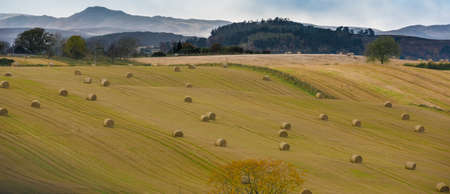 Agriculture in Scotland - Perth and Kinross Council District