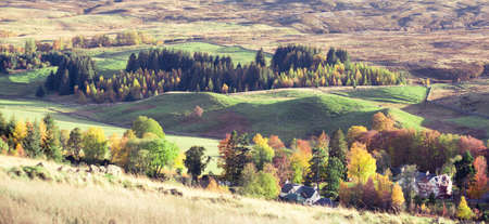 Autumn landscape in Perthshire, Scotland | Colourful trees and heather