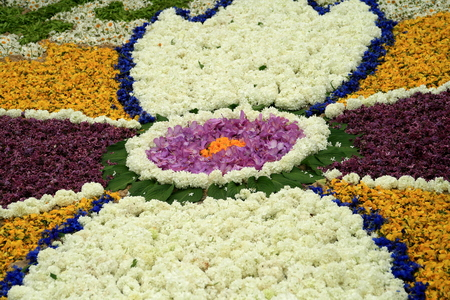 a carpet of flowers