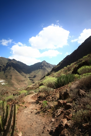Beautiful view in the Gran Canaria  photo