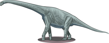 Vector drawing of a dinosaur - Pleurocoelus.