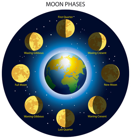 waxing gibbous: Basic phases of the moon. Illustration