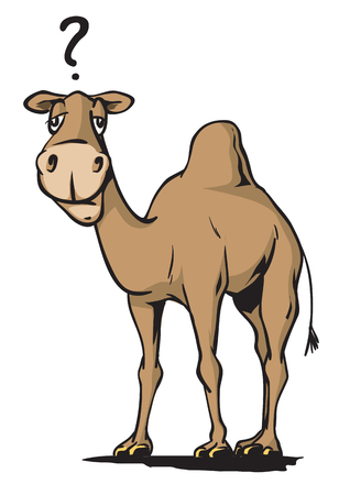 cute: Silly camel Stock Photo