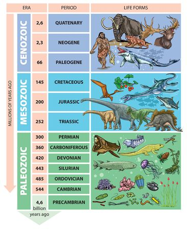 Illustration of geological time scale - periods.