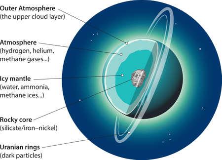 Vector illustration of Uranus basic internal structure.