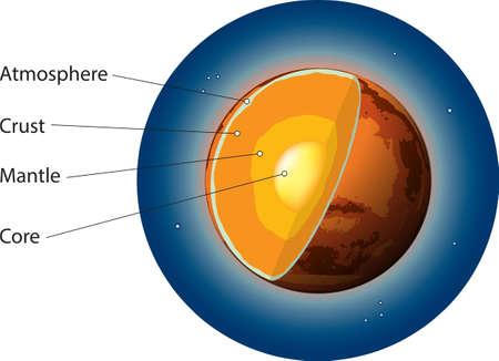 Vector illustration of Mars basic internal structure.