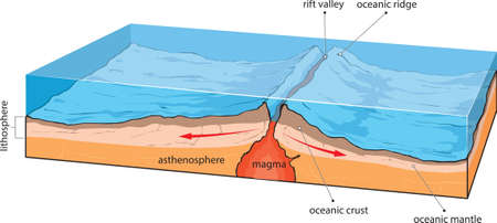 Vector illustration shows divergence of oceanic plates. 向量圖像