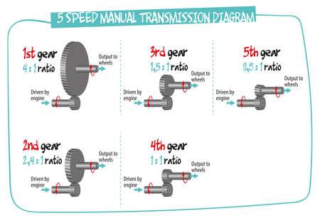 The diagram shows how the manual transmission works - basic principles. Illustration