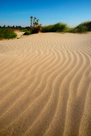 desert sand: Sand dunes and lake Sampanbok Grand canyon of Thailand.