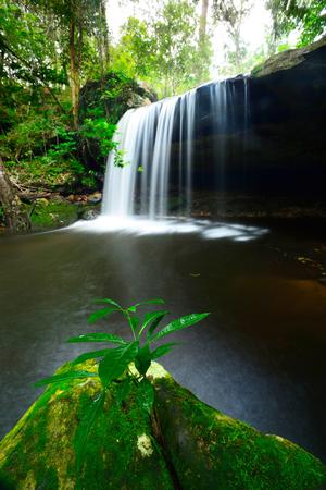 phukradueng: Phukradueng National Park of Thailand. Waterfall in Phukradueng National Park of Thailand.
