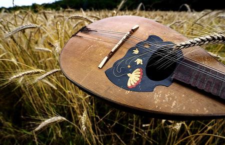 mandolin: Mandolin and wheat