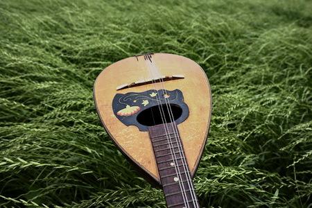 mandolin: Mandolin on green