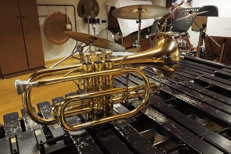 flugelhorn: Flugelhorn is xylophone