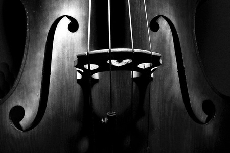 Double bass in black Stock Photo