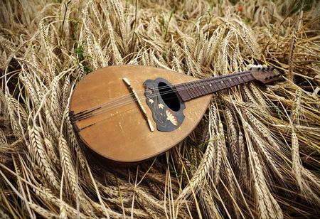 mandolin: Mandolin on wheat
