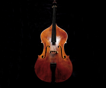 Double bass made in italy Banque d'images