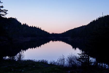 treeline at sunset Stock Photo
