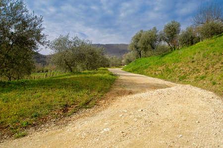 footpath thru the beautifull hills