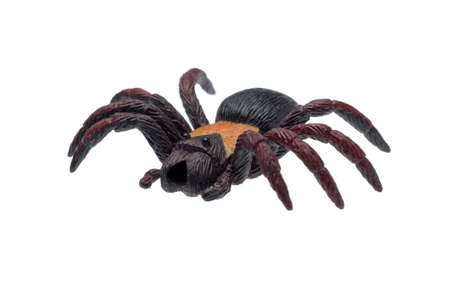 Spider toy in plastic material