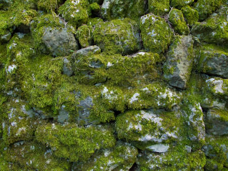Uneven stone wall texture Stock Photo - 12538548