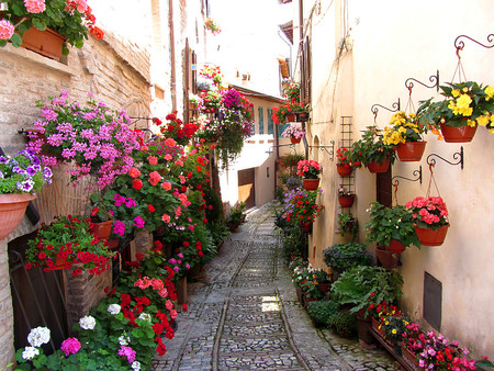 city alley: Windows, balcony and flower alleys in Spello - Perugia Stock Photo