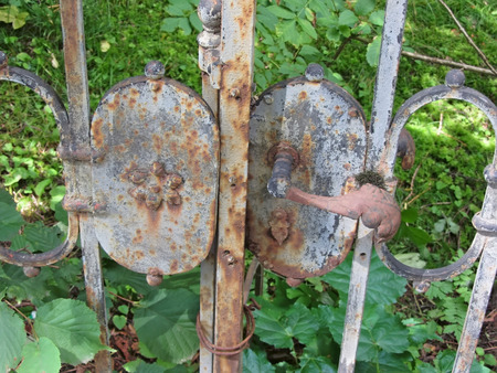 urban decline: Plant branches growing through old rusty gate of abandoned house Stock Photo