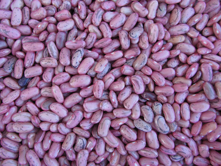pinto bean: Red bean texture background. The beans are cultivated with biological agriculture in Tuscany, Italy