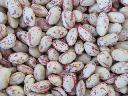 pinto bean: Bean rounded with red specks texture background. The beans are cultivated with biological agriculture in Tuscany, Italy Stock Photo