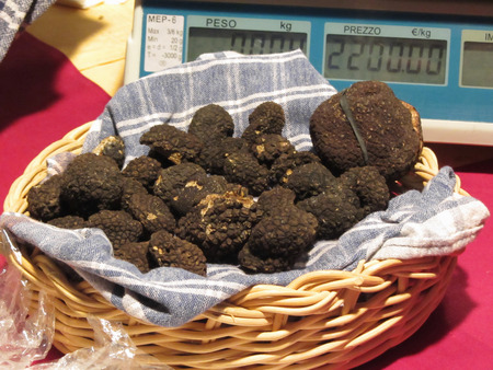Group of italian expensive black truffles on the traditional canvas in the wicker basket