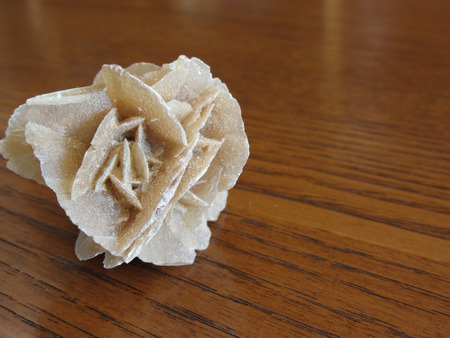 Mineral desert rose on wooden table . Also known as sand rose or rose rock or selenite rose or gypsum rose or baryte rose 版權商用圖片