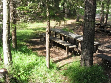Empty wooden tables with benches for picnic and barbecue in forest Standard-Bild