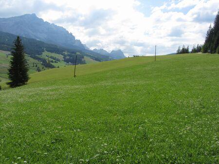 Paesaggio alpino con pascoli verdi e abeti contro le Dolomiti italiane in estate. Vista dal villaggio di La Villa, Bolzano, Alto Adige, Alto Adige, Italy Archivio Fotografico