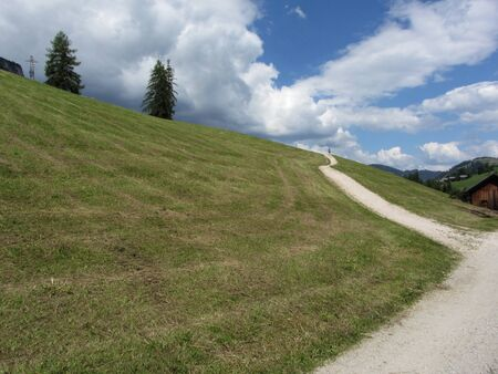 Footpath leading through a green alpine pasture at summer . A man is at the end of the way
