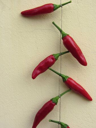 Red braid of chili peppers hanging outdoor against the wall