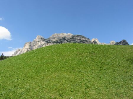 Alpine pasture against italian Dolomites at summer . South Tyrol , Bolzano , Italy