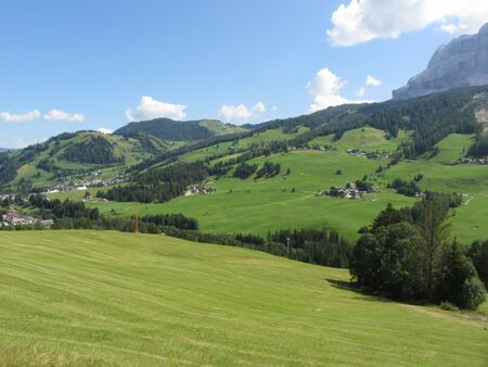 Alpine landscape with green pastures and firs against italian Dolomites at summer . View from La Villa village, Bolzano, Alto Adige, South Tyrol, Italy