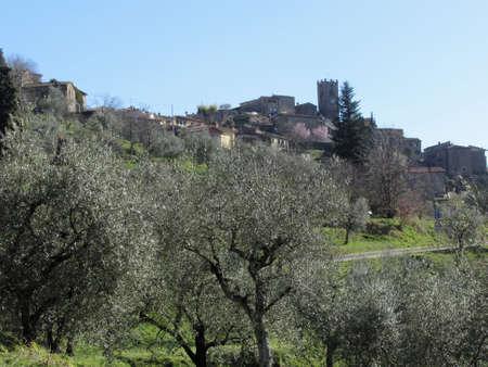 Panorama of Sorana village, province of Pistoia. Tuscany, Italy