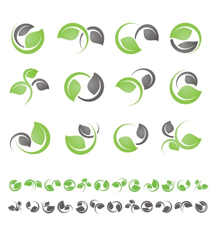 Leaf symbols, icons and signs collection. Set of floral design elements. Vector