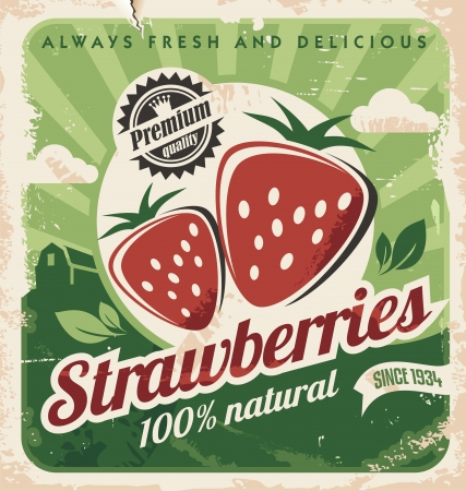 frutilla: Plantilla del cartel del vintage para la granja de fresas