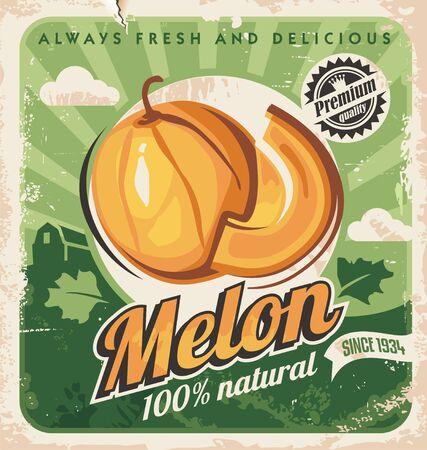 Cantaloupe melon retro poster design. Farm fresh melons vintage ad concept.