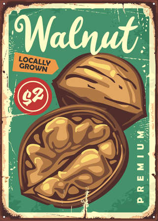 Walnut in shell retro old metal sign with nutrition snack fruit on green background. Vintage vector poster.
