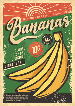 Farm fresh bananas retro promo poster design. Flyer template with tropical fruits. Yellow banana on green textured background sign concept for organic natural food. Vector ad.