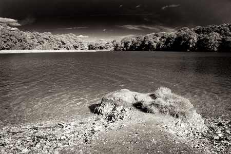 Infrared black and white landscape shot of a tree lined river