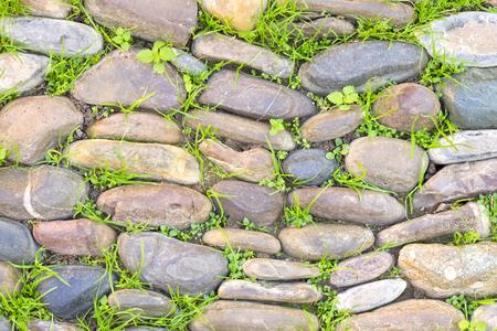 weed block: With sidewalk stone floor vegetation