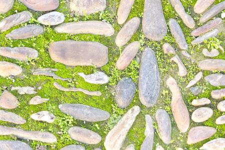 weed block: Floor stone pattern with green vegetation