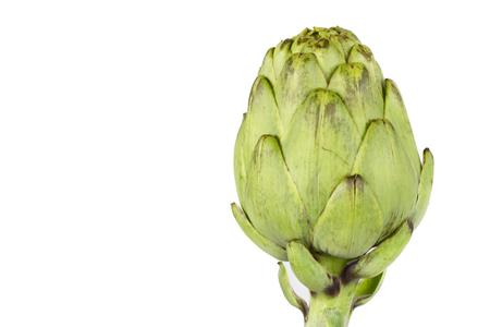 artichoke: Isolated artichoke