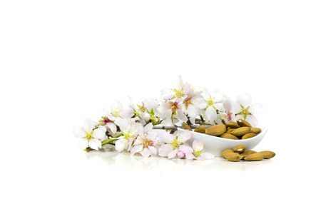 recipient: Almonds in a white almond flowers With recipient. Stock Photo
