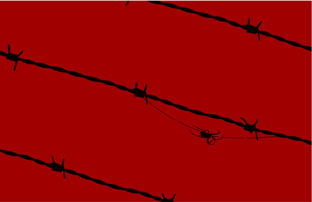 Black spider moving barbed wires Among over a red background.